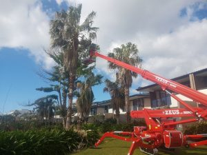 Elevating Work Platform Training - Whitsundays